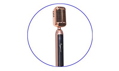 PR-1955 Swing Wireless Microphone